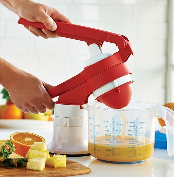 Press Master Juicer Recipes